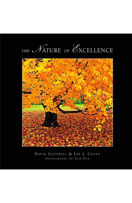 The Nature of Excellence
